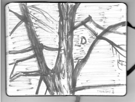 Hawthornden 17