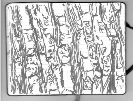 Hawthornden 18